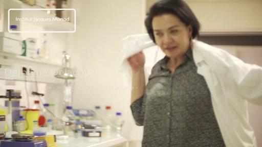 Prix 2017 Recherche Fondation Groupama pour la Santé - Puce Biomimétique intestinale